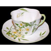 Shelley Lyringa Cup and Saucer on Dainty Blank - Hard to Find