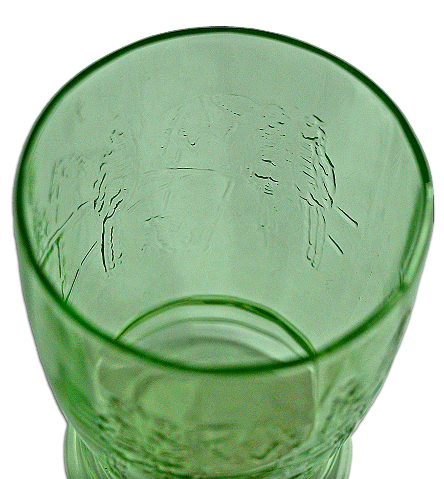 Federal Green Parrot 9 Ounce Tumbler Looking Down