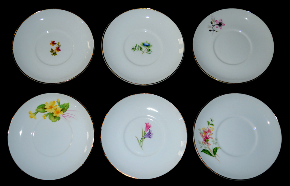 Shelley Floral Saucers