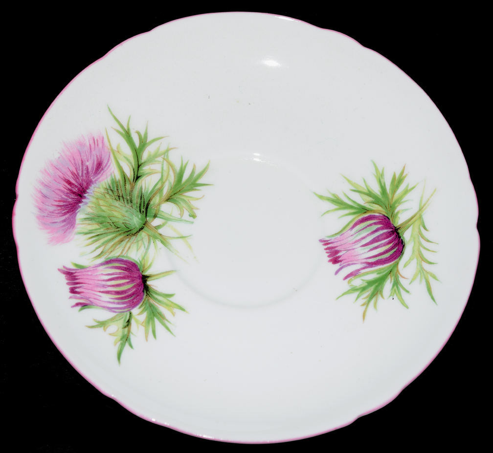 Shelley Thistle Saucer